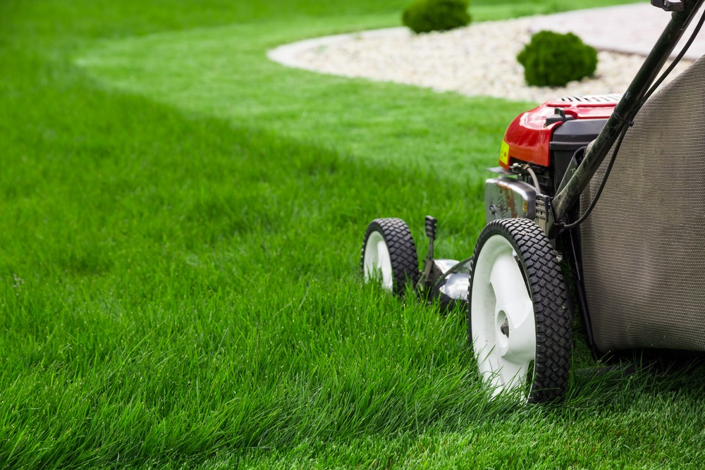 Lawn Mowing Business | Self Storage Edinburgh North